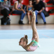 Галерея фотографий - Художественная гимнастика в Ростове